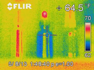 thermography image of our living flower frequencies