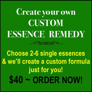 Order your own customized essence fusion