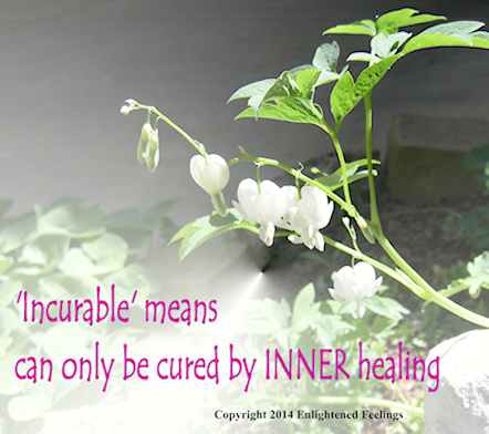 Incurable means 'can only be cured by INNER healing'