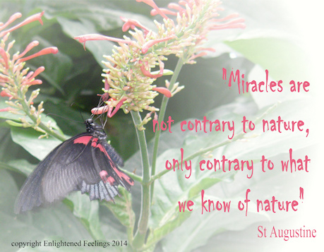 Miracles are not contrary to nature, only contrary to what we know of 'nature'